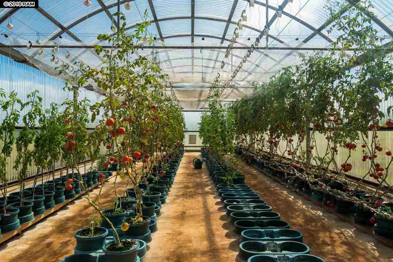 0 Hana Hwy  Haiku-Pauwela, Hi 96708 vacant land - photo 25 of 30
