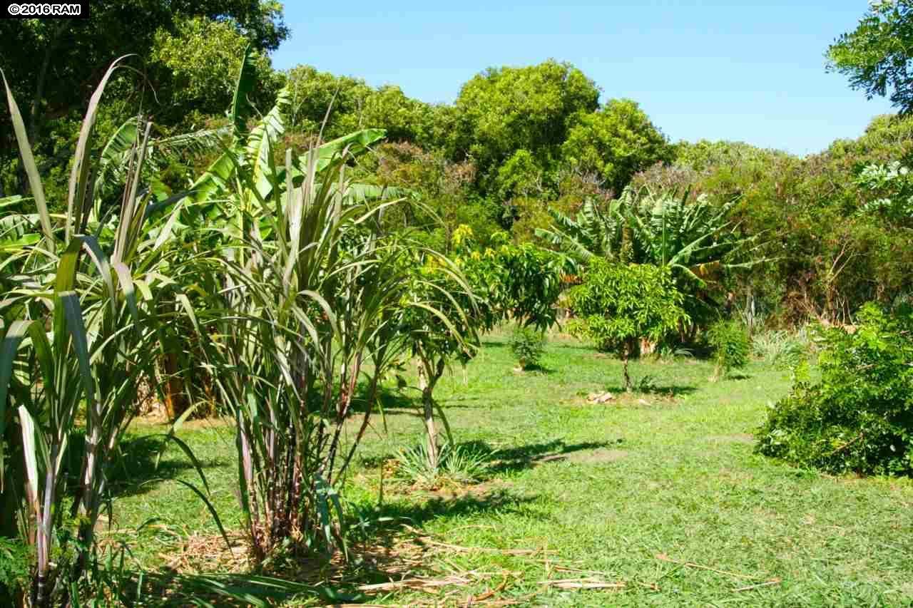 0 Hana Hwy  Haiku-Pauwela, Hi 96708 vacant land - photo 27 of 30