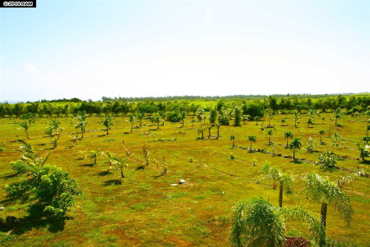 0 Hana Hwy  Haiku-Pauwela, Hi 96708 vacant land - photo 6 of 30