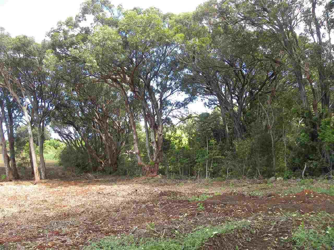 0 S Holokai Rd , Hi 96708 vacant land - photo 11 of 15