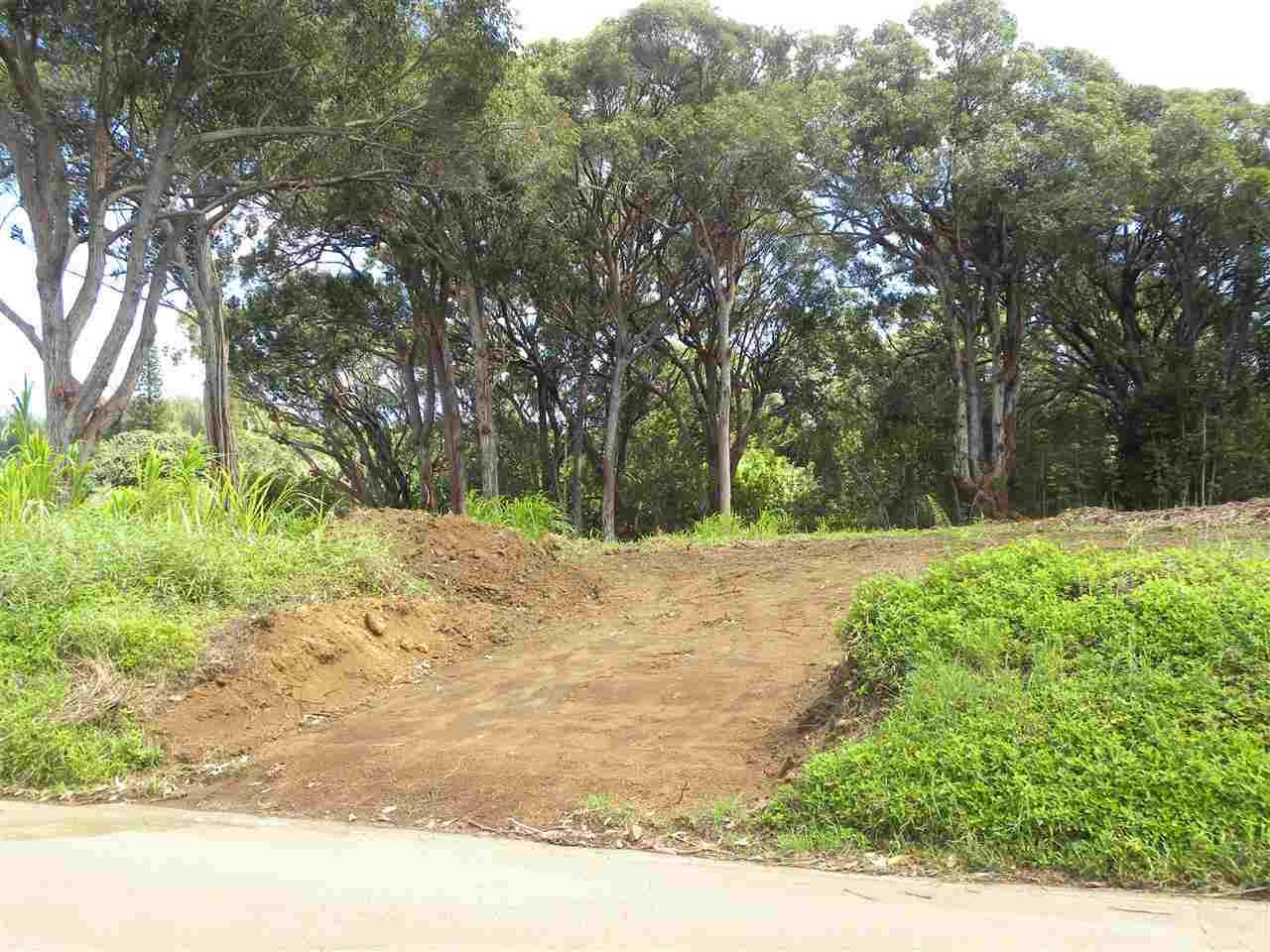 0 S Holokai Rd , Hi 96708 vacant land - photo 12 of 15