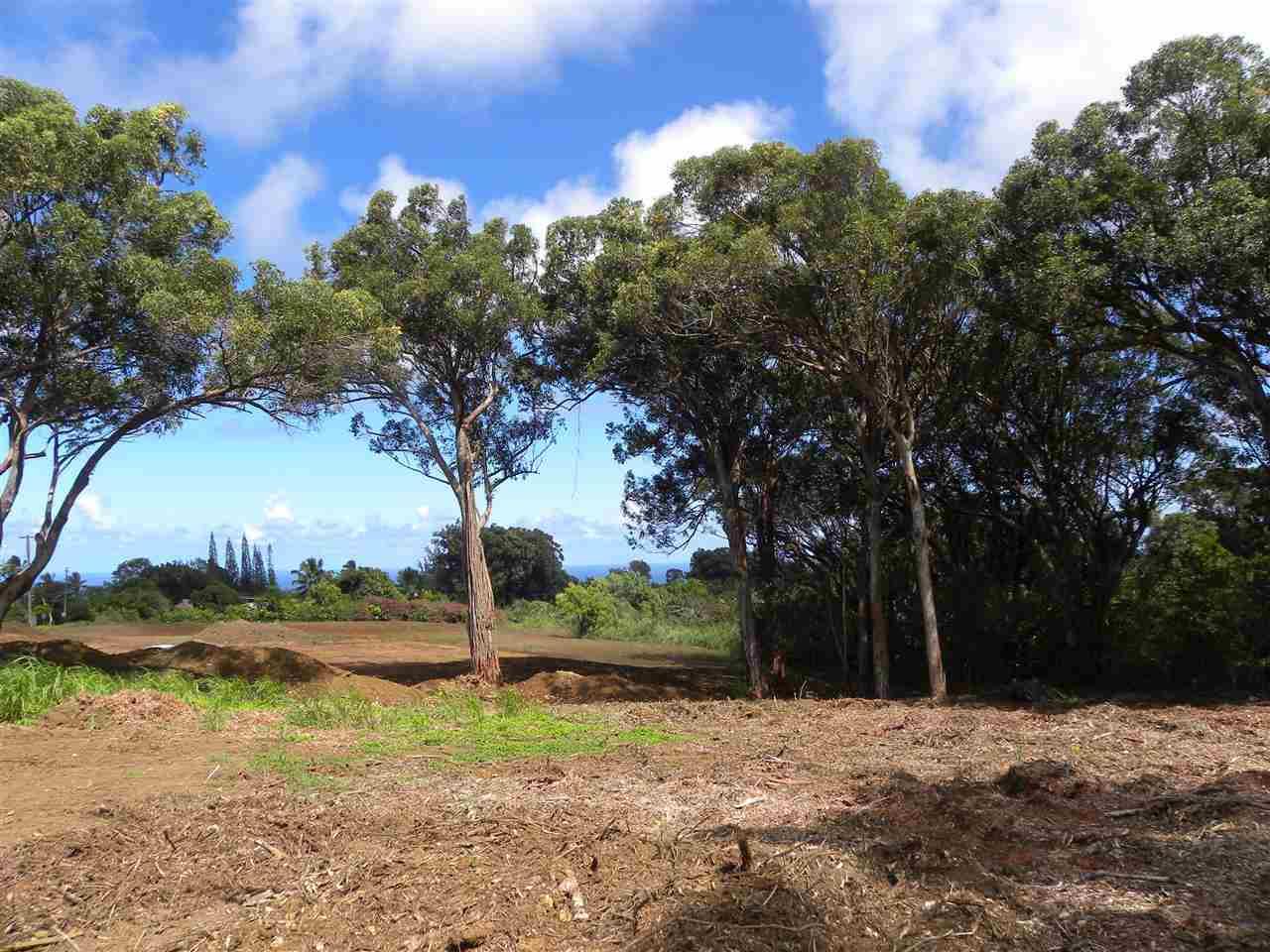 0 S Holokai Rd , Hi 96708 vacant land - photo 3 of 15