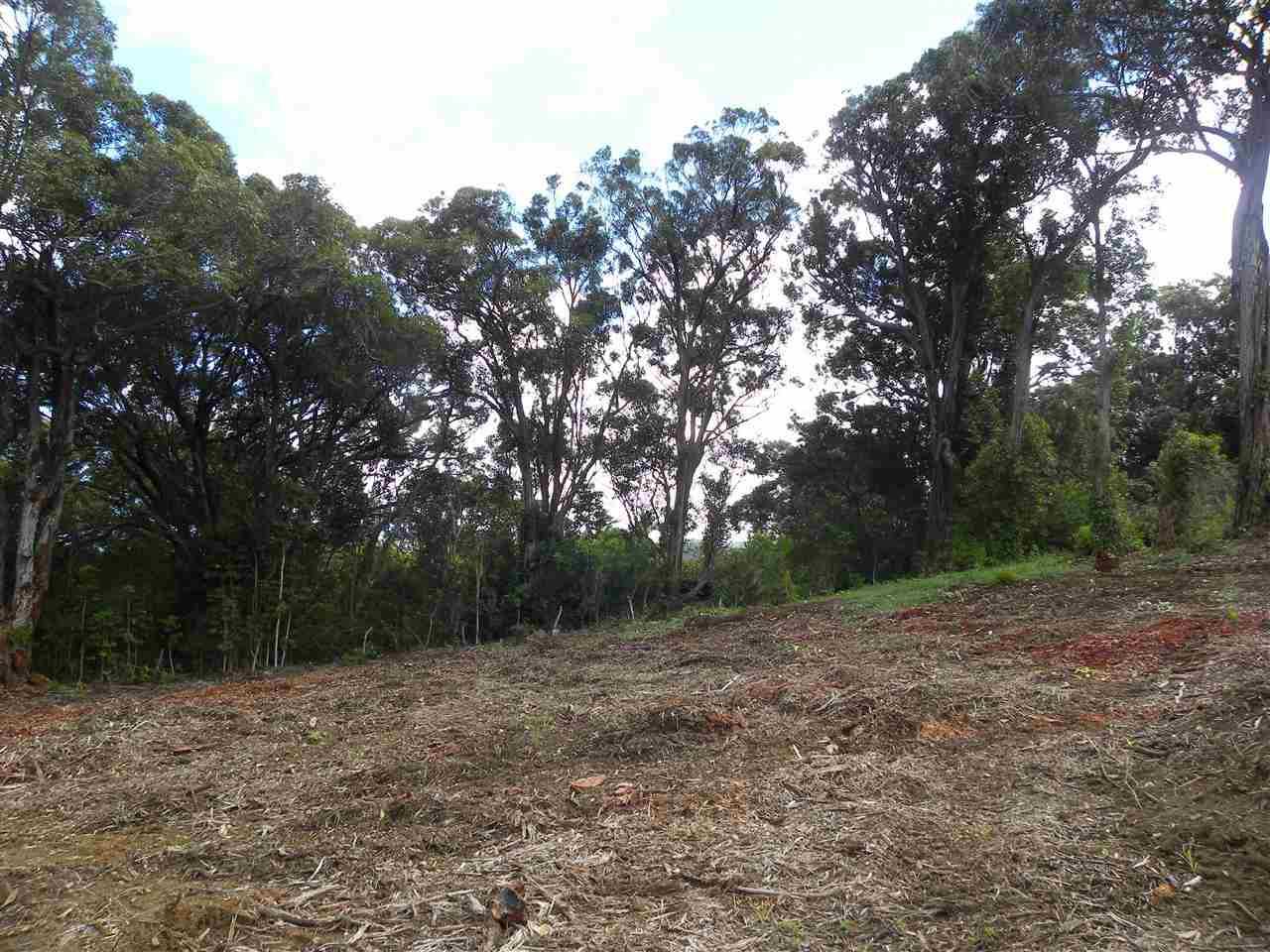 0 S Holokai Rd , Hi 96708 vacant land - photo 6 of 15