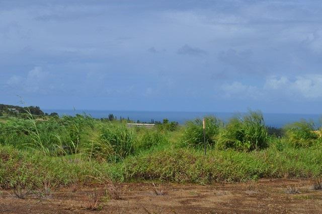 0 Hookili Rd , Hi 96708 vacant land - photo 19 of 24