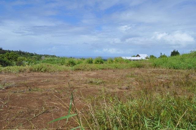 0 Hookili Rd , Hi 96708 vacant land - photo 21 of 24