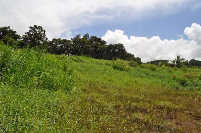 0 Hookili Rd , Hi 96708 vacant land - photo 23 of 24
