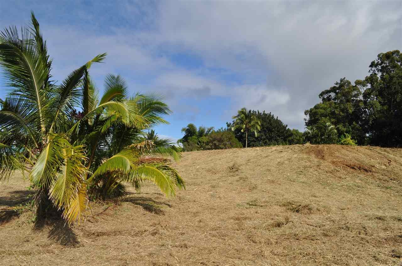 0 Hookili Rd , Hi 96708 vacant land - photo 24 of 24