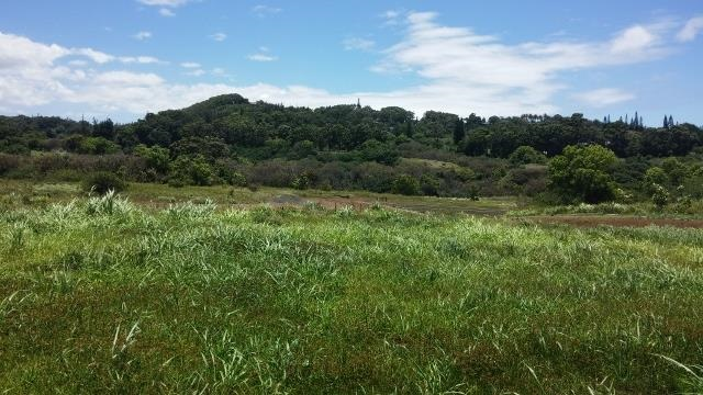 0 Hookili Rd , Hi 96708 vacant land - photo 4 of 10