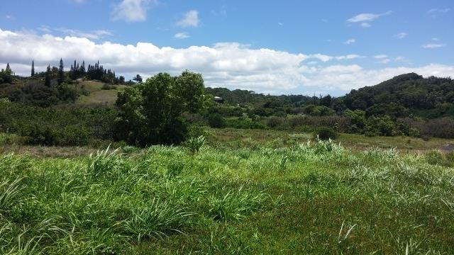0 Hookili Rd , Hi 96708 vacant land - photo 5 of 10