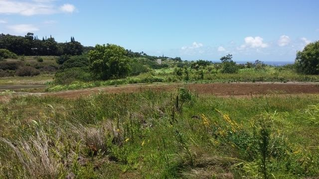 0 Hookili Rd , Hi 96708 vacant land - photo 8 of 10