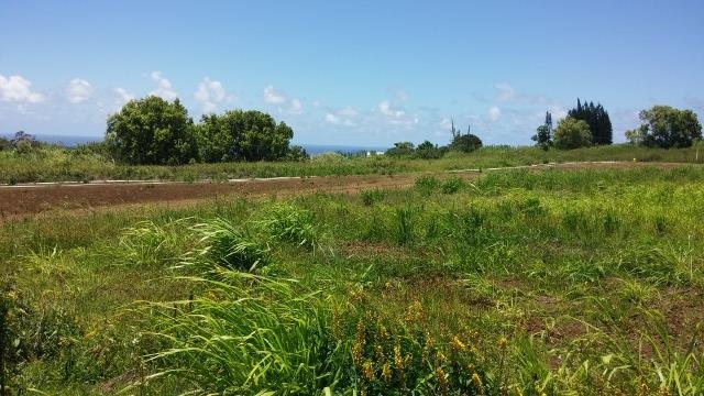 0 Hookili Rd , Hi 96708 vacant land - photo 9 of 10