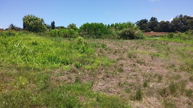 0 Hookili Rd , Hi 96708 vacant land - photo 10 of 10