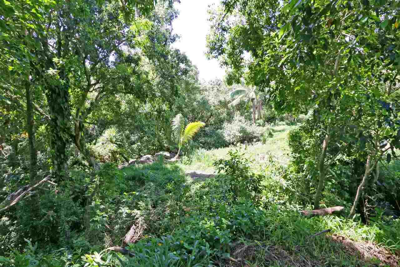 0 Hoolawa Rd , Hi 96708 vacant land - photo 3 of 6
