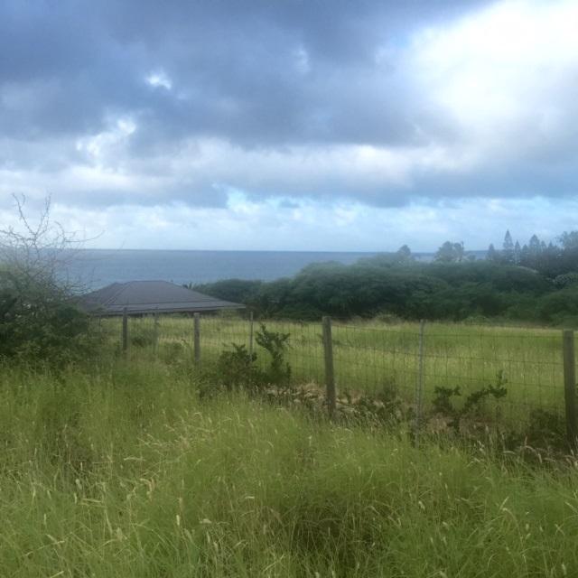 0 Kalua Koi Rd Builder Lot 238 Maunaloa, Hi 96770 vacant land - photo 7 of 18