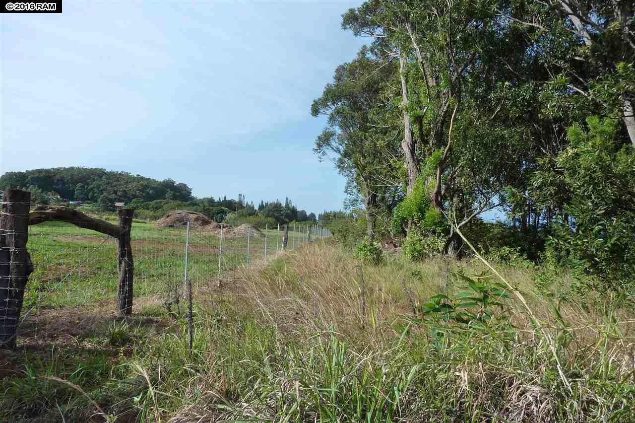 0 Kauhikoa Road  , Hi 96708 vacant land - photo 4 of 6