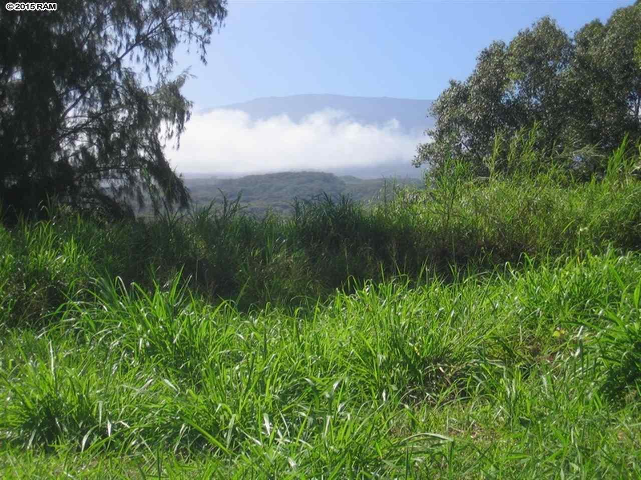 Kaupakalua Rd , Hi 96708 vacant land - photo 1 of 9