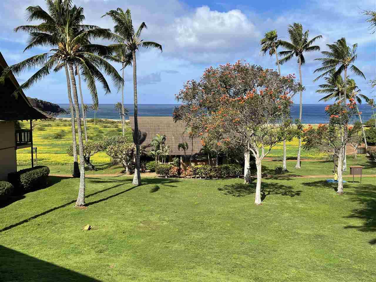 West Molokai Resort condo # 13B08/2212, Maunaloa, Hawaii - photo 16 of 30