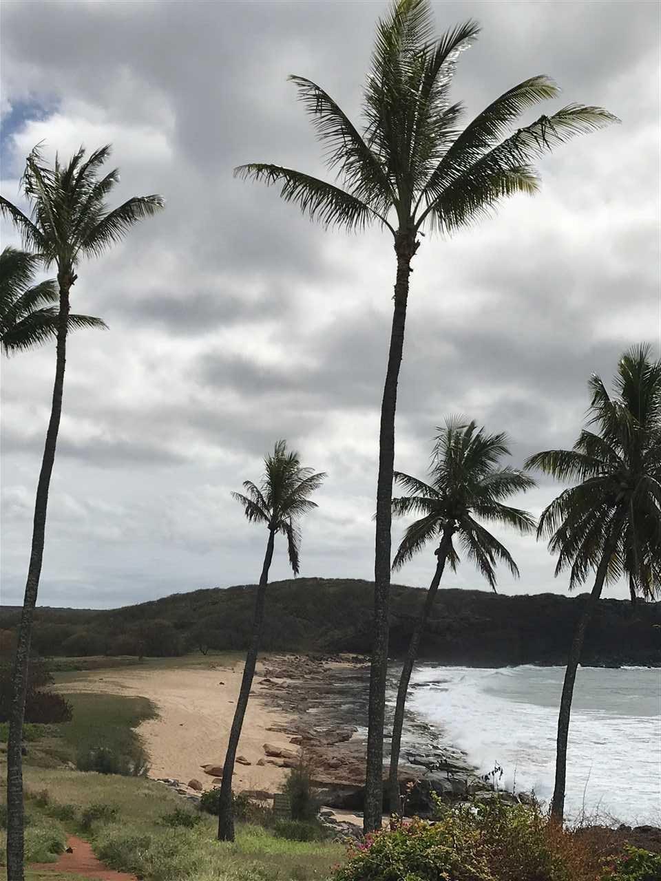 West Molokai Resort condo # 13B08/2212, Maunaloa, Hawaii - photo 28 of 30