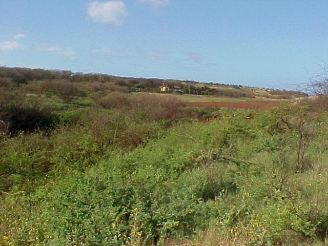 0 Kulawai Pl Lot 230 Maunaloa, Hi 96770 vacant land - photo 5 of 6