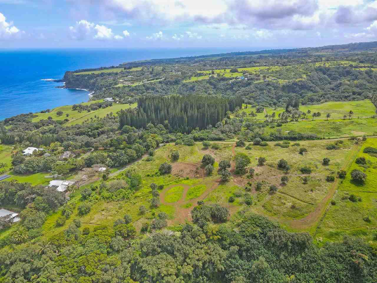 Manawai Pl Lot 3 Haiku, Hi 96708 vacant land - photo 3 of 19