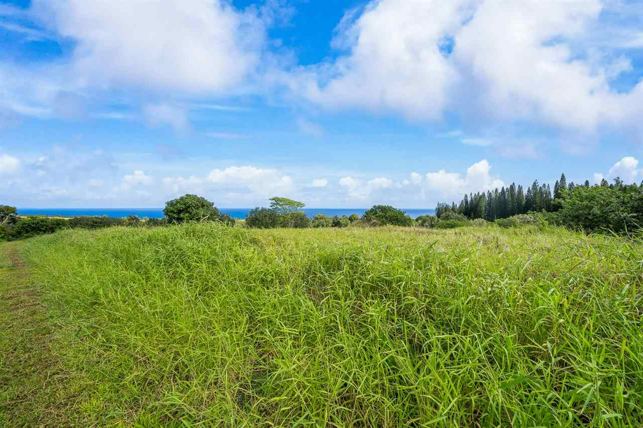 Manawai Pl Lot 3 Haiku, Hi 96708 vacant land - photo 7 of 19