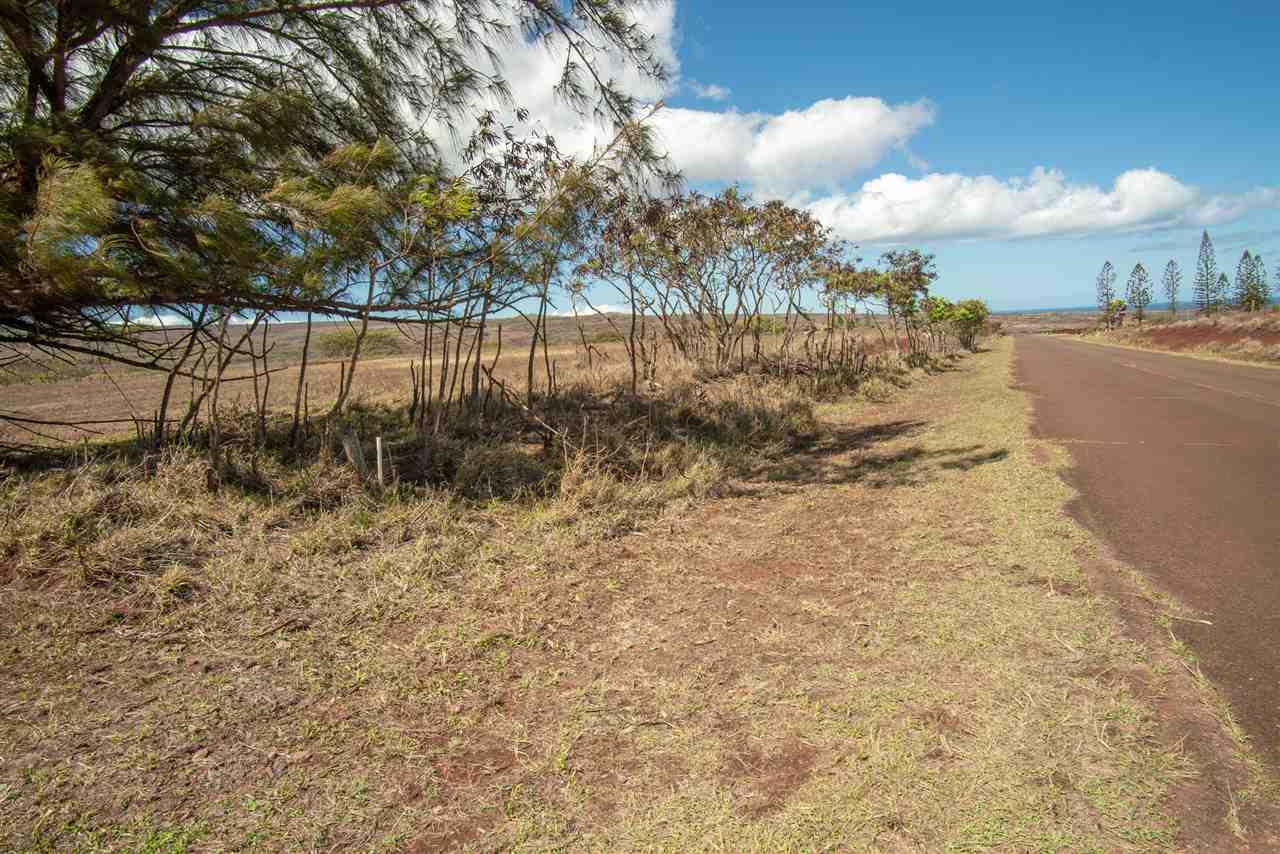 Pa Loa Loop Lot 84 Maunaloa, Hi 96770 vacant land - photo 15 of 20