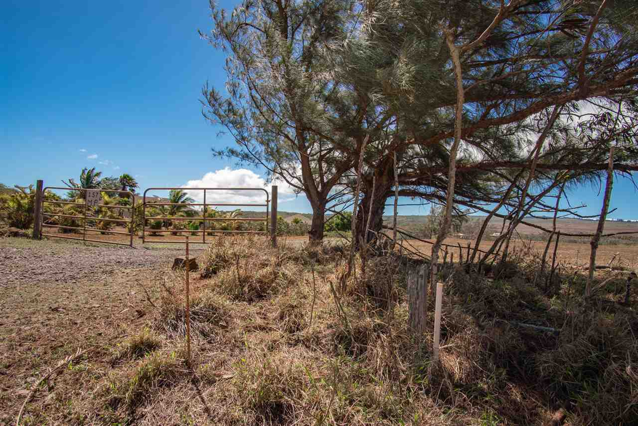 Pa Loa Loop Lot 84 Maunaloa, Hi 96770 vacant land - photo 4 of 20