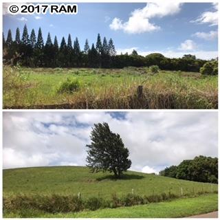 0 Puuomalei Rd , Hi 96708 vacant land - photo 1 of 6