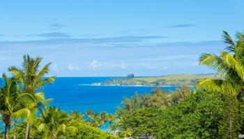 condo # 21, Lahaina, Hawaii - photo 1 of 30