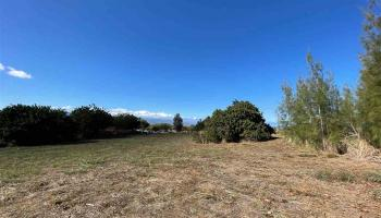 4 Lilinoe Pl  Makawao, Hi  vacant land - photo 1 of 16