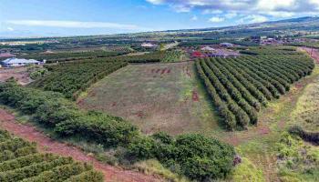 100 Aina Mahiai St Lahaina, Hi 96761 vacant land - photo 4 of 6