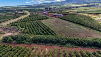 100 Aina Mahiai St Lahaina, Hi 96761 vacant land - photo 5 of 6