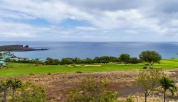 46 Kaumalapau Hwy Lanai City, Hi 96763 vacant land - photo 0 of 21
