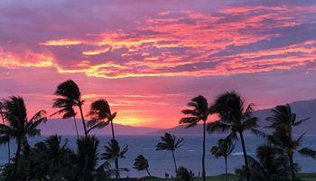 Maui Sunset condo # B508, Kihei, Hawaii - photo 1 of 30