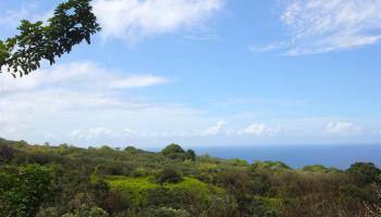 110 Nahiku Rd , Hi 96708 vacant land - photo 4 of 16