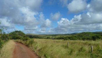 79 Pa Loa Loop Maunaloa, Hi  vacant land - photo 1 of 5