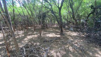 120 Manako Ln  Kaunakakai, Hi 96748 vacant land - photo 1 of 6