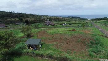 1251 Hookili Rd Haiku, Hi 96708 vacant land - photo 4 of 24