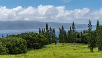 238 Keoawa St HR2, Lot 21 Lahaina, Hi 96761-8778 vacant land - photo 1 of 22