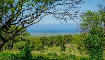 130 Ikena Kai Pl Lot H Kula, Hi  vacant land - photo 1 of 13