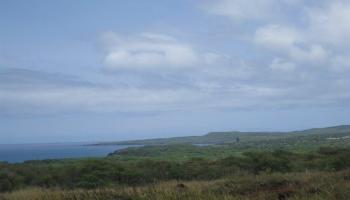 132 Ahiu Rd , Hi 96770 vacant land - photo 1 of 10
