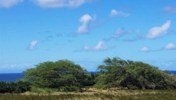 139 Ahiu Rd Maunaloa, Hi 96770 vacant land - photo 4 of 11