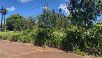 Kulawai Pl Lot 227 Maunaloa, Hi 96770 vacant land - photo 1 of 5