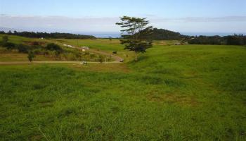 160 Hekuawa St Haiku, Hi 96708 vacant land - photo 2 of 23