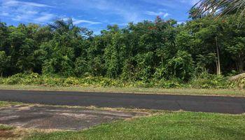 160 Uwala Rd  Hana, Hi  vacant land - photo 1 of 30