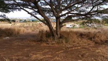 1771 Piihana Rd  Wailuku, Hi  vacant land - photo 1 of 4