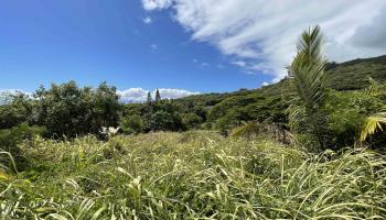 178 River Rd  Wailuku, Hi 96793 vacant land - photo 1 of 12