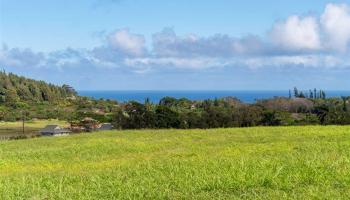184 Hekuawa St Haiku, Hi 96708 vacant land - photo 1 of 10