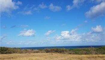 189 Pohakuloa Rd , Hi 96770 vacant land - photo 2 of 8