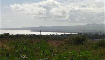 2011 Puuohala Rd 52 Wailuku, Hi 96793 vacant land - photo 1 of 6